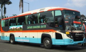 Bus Safari Dharma Raya