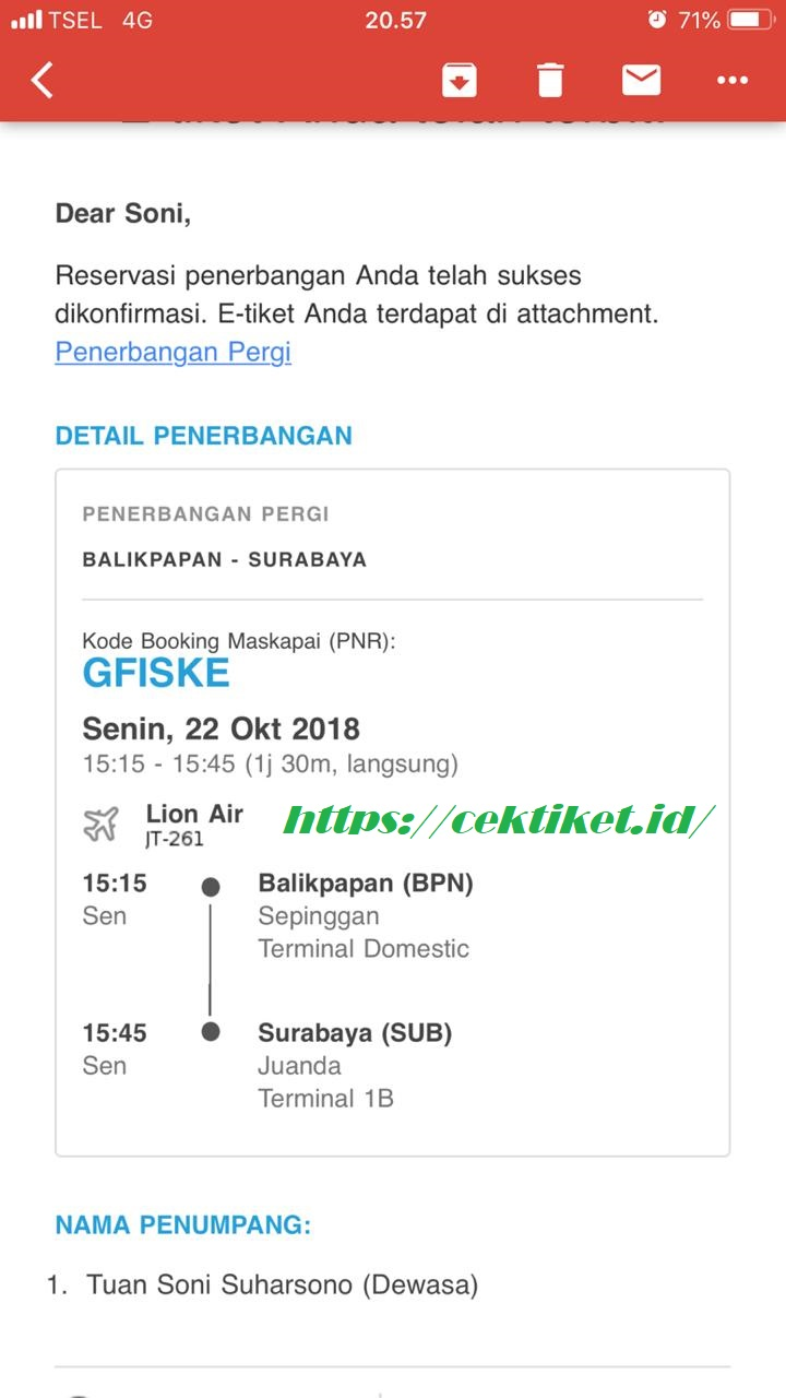 mudah check in online lion air
