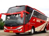 Armada Bus Agra Mas