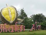 Objek Wisata Bhakti Alam